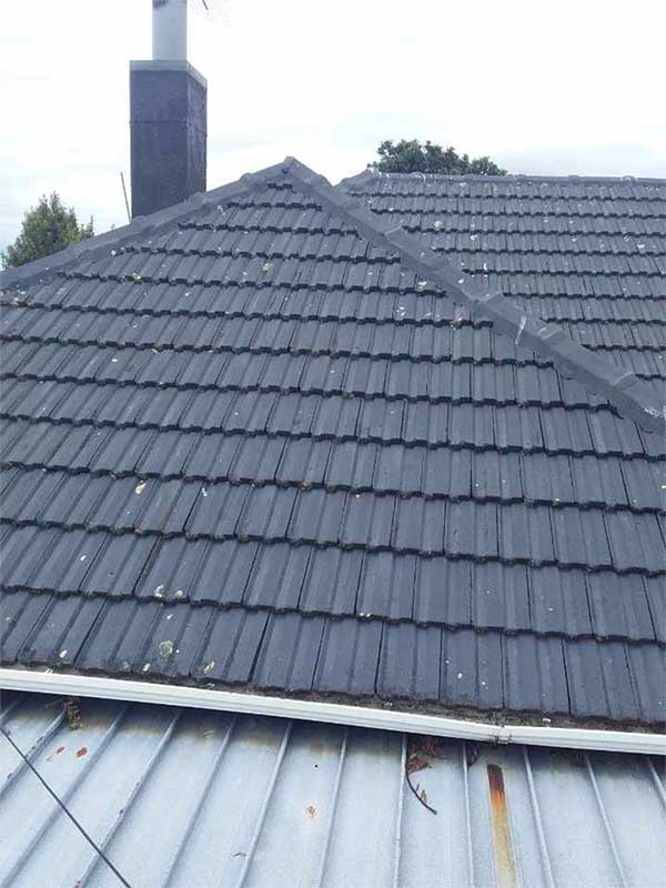 Rehua Roofing tiles